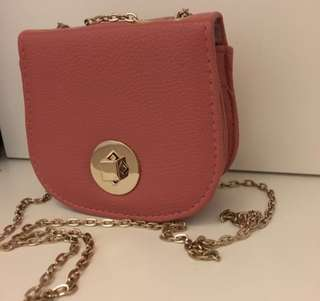 Small Pink Chain Bag