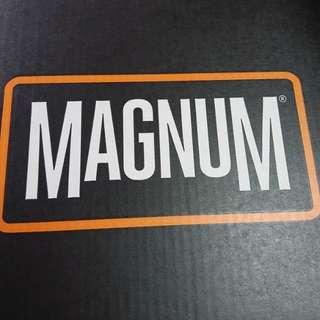 Magnum bootz
