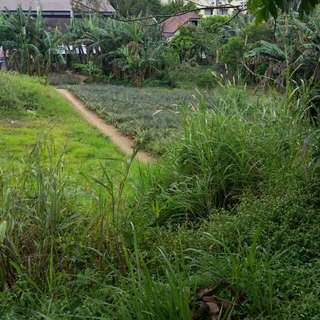 Lot for sale kaykulot tagaytay-sta road