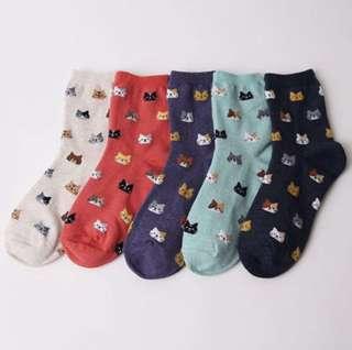 Cats pattern high socks