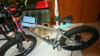Custom fat bike for sales