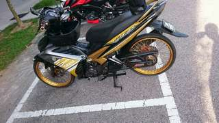 Aloi Thai Gold