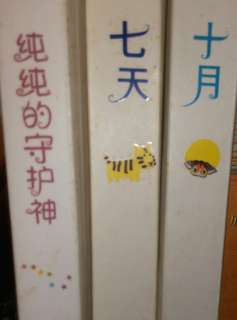 Chinese Book for Secondary Students
