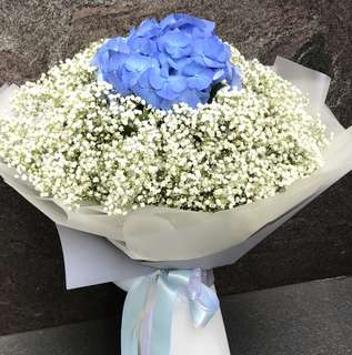Blue Hydrangea and lots of Baby Breath Hand Bouquet