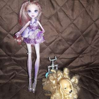 dolls and accesories