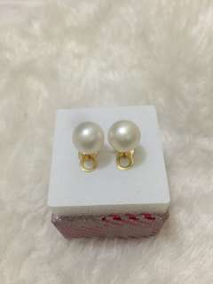 Genuine Southsea Pearl Earrings with 14k gold setting