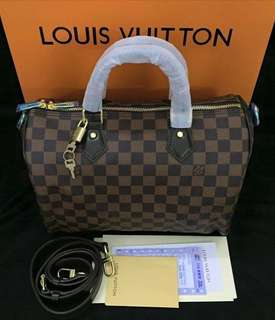 Louis Vuitton Doctors Bag