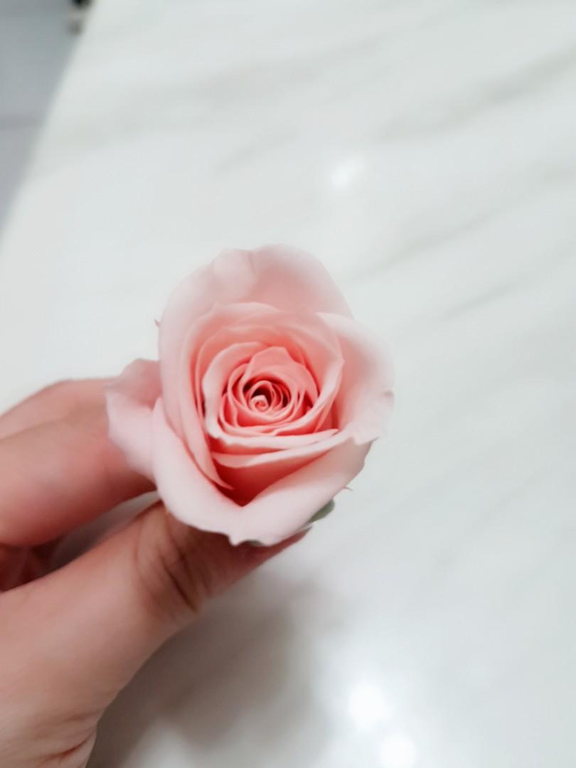 不凋花 日本進口 玫瑰 乾燥花 花束 材料