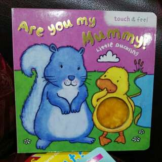 Touch and feel Are you my Mummy boardbook