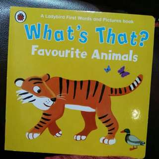 A ladybirds first words and picture book- Favorite Animals
