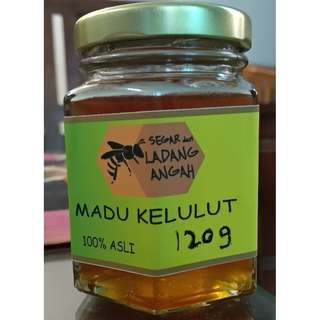 Madu Kelulut / Stingless Bee Honey 100% Asli - 120 gram