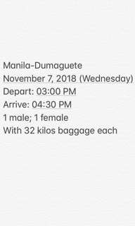 MNL-DGT plane tickets