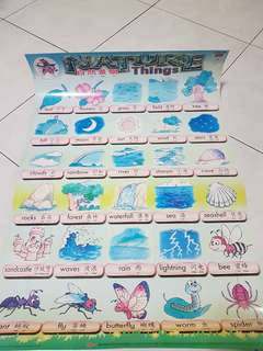 Kids learning charts 5 pieces