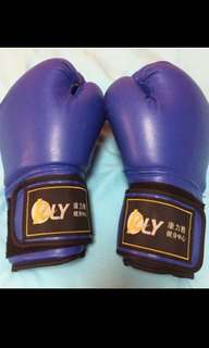 Brand New Muay Thai/ Boxing Glove