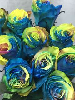 Rainbow roses Hand Bouquet