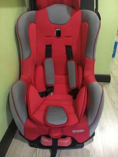Sweet cherry Car Seat