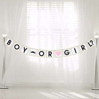 BOY OR GIRL? Banner
