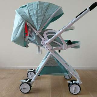 Convertible stroller (almost new)