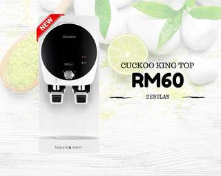Cuckoo King Top