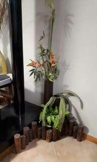 Moving out Sale- Decorative Garden Corner