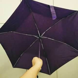 Magic Purple / Violet Umbrella