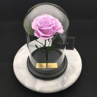 品牌:Le Fiori Secert  外國巨型玫瑰保鮮花(粉紫色)