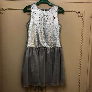 Peppermint Silver Dress