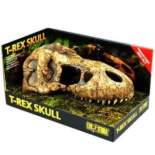 Exo Terra T-Rex Skull