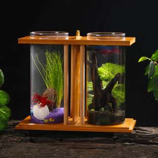 Betta Fighting Fish Tank (Twin Pack) With Led Light