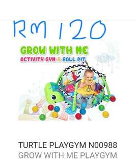 Turtle play gym
