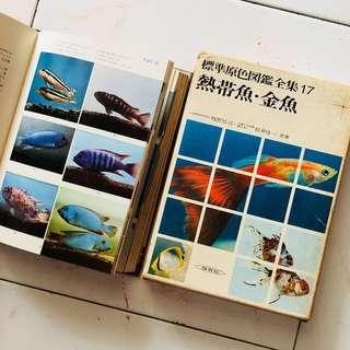 热带鱼。金鱼 (日本語版)