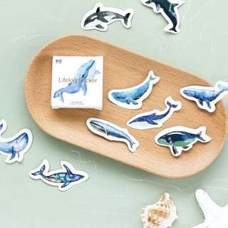 [ST] Boxed Stickers: Whales