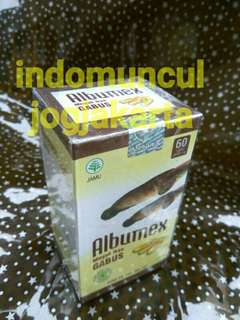 albumex minyak sari kutuk albumin (Kapsul minyak Ikan gabus- Kutuk)