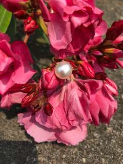 18k金南洋白珍珠戒指