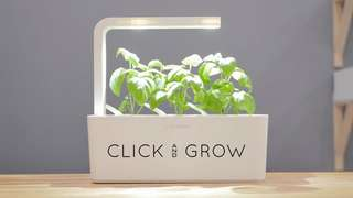 Click and Grow (includes pods)