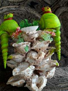 Conch Hand Craft