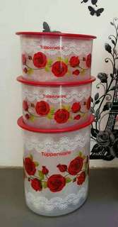 Red royal lace limited editn