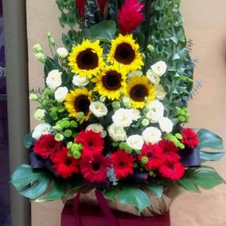 Flowers AO0123 Opening/Congratulatory Stand