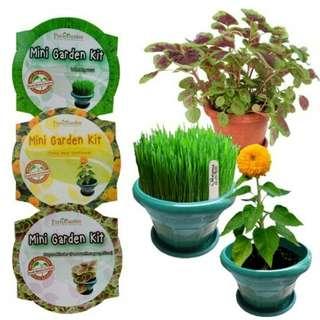 Paket berkebun lengkap pot tanaman pupuk