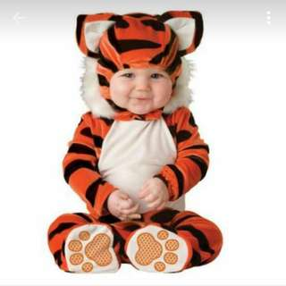 In Character Baby Boy Tiger Animal Costume