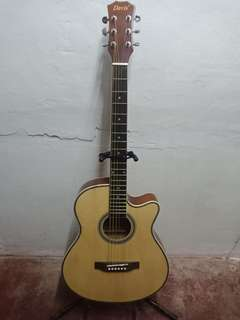 Acoustic-Electric Guitar (Slim)