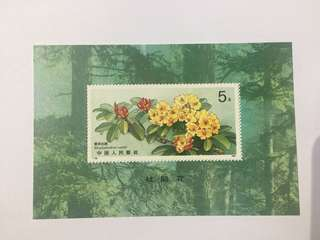 Prc china T162M flower MS mnh