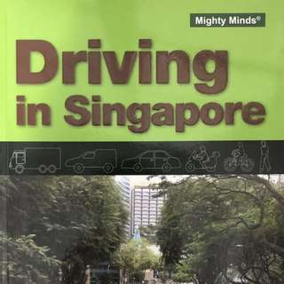Driving in Singapore by Might Minds