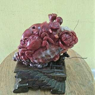 Stone Crab @ 寄居蚧