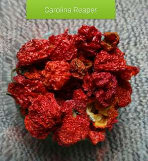 Dried Carolina Reaper 5gm pack