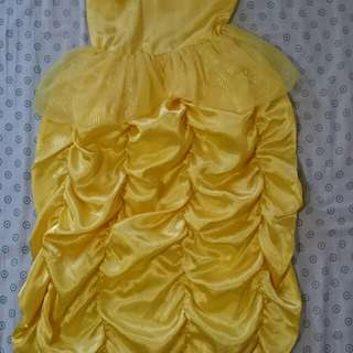 Dress/costume
