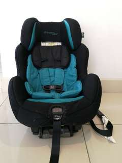 Carseat - The First Year