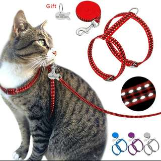 Personalized Nylon Cat Harness & Leash Set With ID Tag
