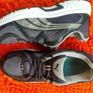 Sepatu Puma Original Size 43