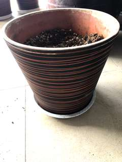 Mid size patterned claypot